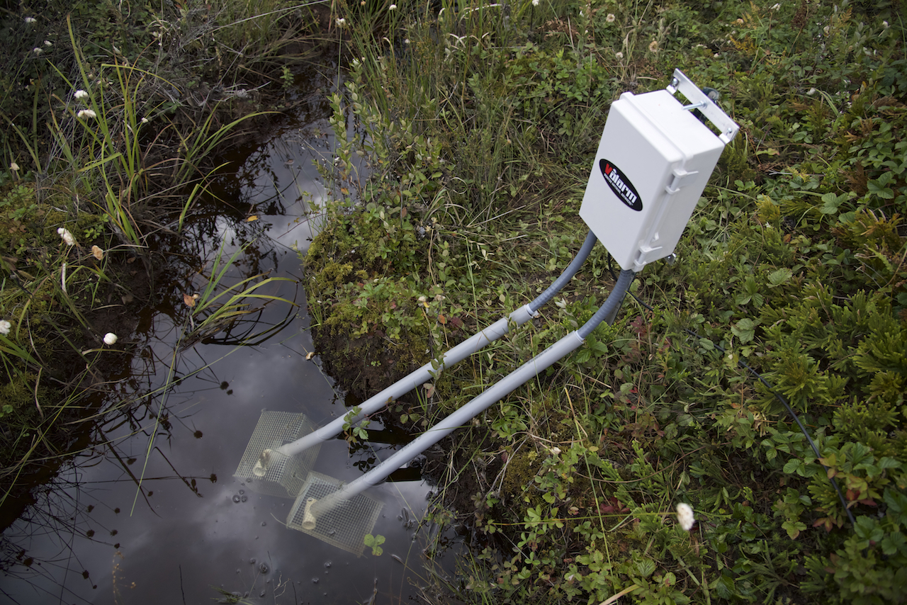 water quality monitoring